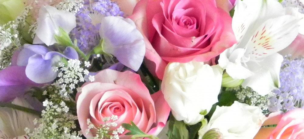 Escarlate Flores Online